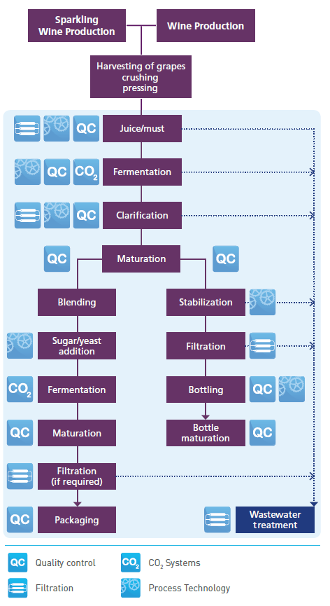 Winery production - infographic - Image 1