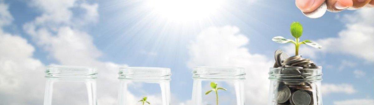 Biogasqualitätsüberwachung - BioSense - Bild 4