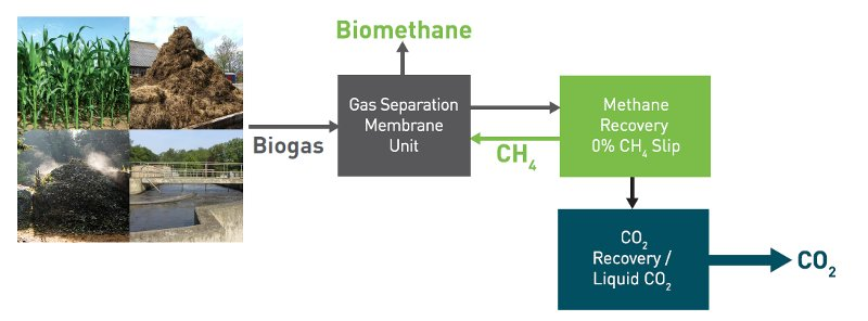 Biogastechnik - Biogasaufbereitungstechnologie - Haffmans - Schema - Bild 1